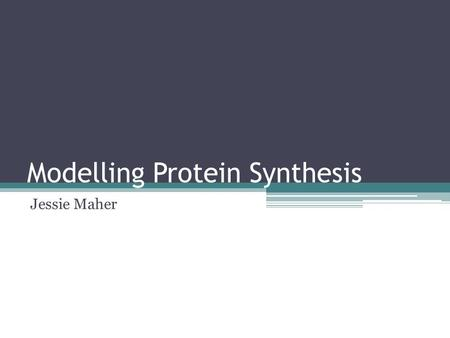 Modelling Protein Synthesis Jessie Maher. In this experiment, we produced a simple model of a section of DNA, and modelled the processes involved in protein.