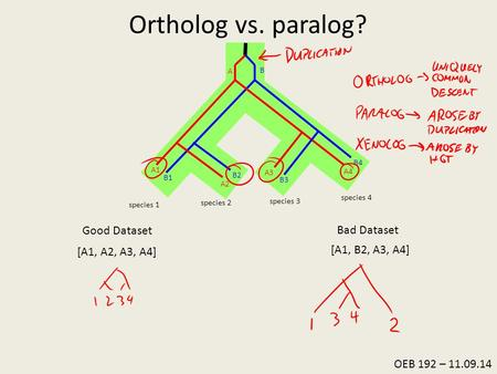 Ortholog vs. paralog? 1. Collect Sequence Data Good Dataset