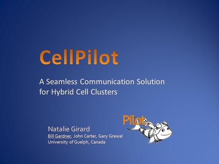 A Seamless Communication Solution for Hybrid Cell Clusters Natalie Girard Bill Gardner, John Carter, Gary Grewal University of Guelph, Canada.