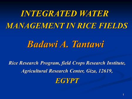 1 INTEGRATED WATER MANAGEMENT IN RICE FIELDS MANAGEMENT IN RICE FIELDS Badawi A. Tantawi Rice Research Program, field Crops Research Institute, Agricultural.
