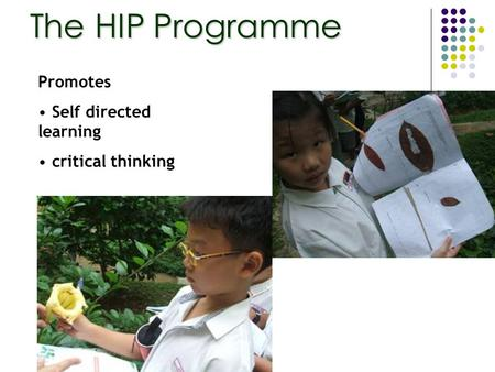 The HIP Programme Promotes Self directed learning critical thinking.