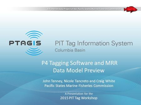 P4 Tagging Software and MRR Data Model Preview John Tenney, Nicole Tancreto and Craig White Pacific States Marine Fisheries Commission A Presentation for.