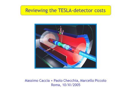 Reviewing the TESLA-detector costs Massimo Caccia + Paolo Checchia, Marcello Piccolo Roma, 10/XI/2005.