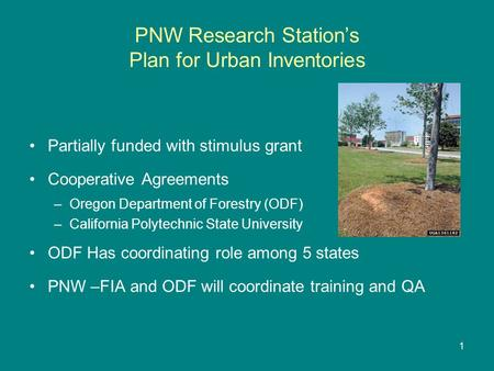 PNW Research Station's Plan for Urban Inventories Partially funded with stimulus grant Cooperative Agreements –Oregon Department of Forestry (ODF) –California.