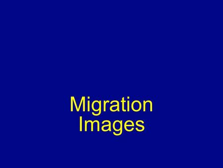 Migration Images. Why People Migrate Reasons for migrating –Push & pull factors Economic Cultural Environmental – Intervening obstacles/opportunities.