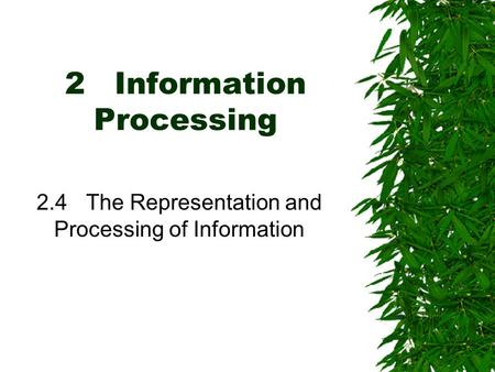 2Information Processing 2.4The Representation and Processing of Information.