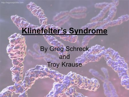 Klinefelter's Syndrome By Greg Schreck and Troy Krause.