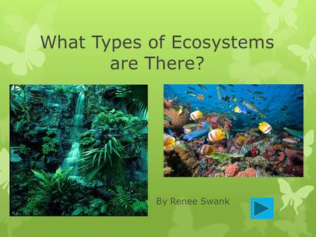 What Types of Ecosystems are There? By Renee Swank.