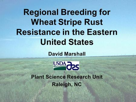 Regional Breeding for Wheat Stripe Rust Resistance in the Eastern United States David Marshall Plant Science Research Unit Raleigh, NC.