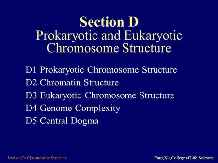 Section D: Chromosome StructureYang Xu, College of Life Sciences Section D Prokaryotic and Eukaryotic Chromosome Structure D1 Prokaryotic Chromosome Structure.