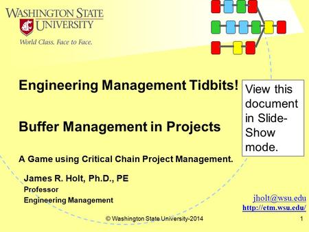 Engineering Management Tidbits! © Washington State University-20141  James R. Holt, Ph.D., PE Professor Engineering Management.