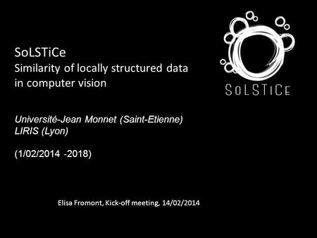 SoLSTiCe Similarity of locally structured data in computer vision Université-Jean Monnet (Saint-Etienne) LIRIS (Lyon) (1/02/2014 -2018) Elisa Fromont,