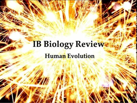 IB Biology Review Human Evolution.