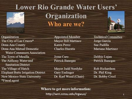 Lower Rio Grande Water Users' Organization Who are we?  Where to get more information: 1 Organization The City of Las Cruces*