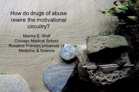 How do drugs of abuse rewire the motivational circuitry?