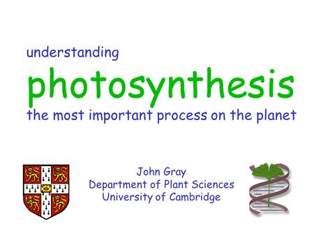 Understanding photosynthesis the most important process on the planet John Gray Department of Plant Sciences University of Cambridge.