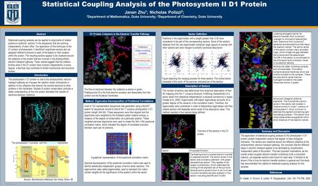 TEMPLATE DESIGN © 2008 www.PosterPresentations.com Statistical Coupling Analysis of the Photosystem II D1 Protein Janan Zhu 1 ; Nicholas Polizzi 2 ; 1.