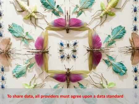 To share data, all providers must agree upon a data standard.