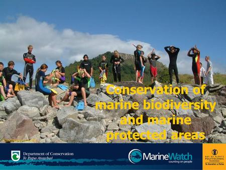 Conservation of marine biodiversity and marine protected areas Pongakawa School.