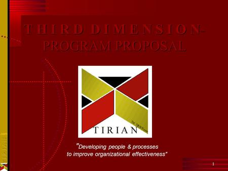 1 1 T H I R D D I M E N S I O N ™ PROGRAM PROPOSAL  Developing people & processes to improve organizational effectiveness