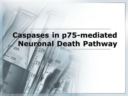 Caspases in p75-mediated Neuronal Death Pathway. Cell Death Necrosis –Response to disease –Inflammatory Response Apoptosis –Present in Developing Tissue.