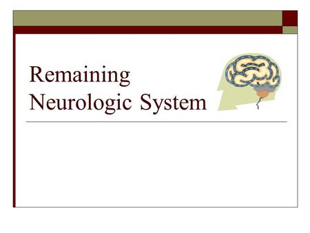 Remaining Neurologic System