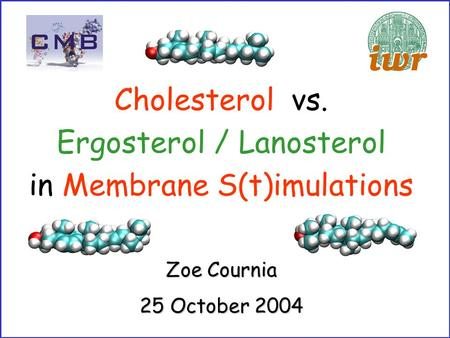 Zoe Cournia 25 October 2004 Cholesterol vs. Ergosterol / Lanosterol in Membrane S(t)imulations.
