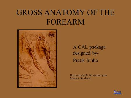GROSS ANATOMY OF THE FOREARM