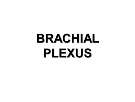 BRACHIAL PLEXUS. OBJECTIVES. DEFINATION OF PLEXUS HOW IT IS FORMED DIFFERENT PARTS OF BRACHIAL PLEXUS. BRANCHES FROM BRACHIAL PLEXUS.
