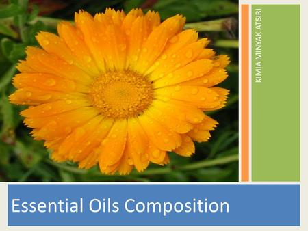 Essential Oils Composition KIMIA MINYAK ATSIRI. ESSENTIAL OIL COMPOSITION Essential Oils are complex mixture of sometimes hundreds of chemicals compounds.