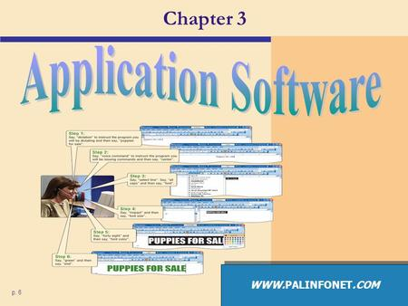 Chapter 3 p. 6 WWW.PALINFONET.COM. Application Software What is application software?  Programs that perform specific tasks for users p. 132 Fig. 3-1.