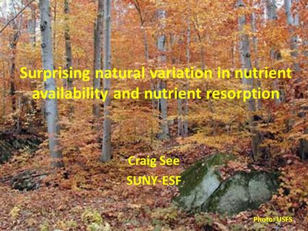 Surprising natural variation in nutrient availability and nutrient resorption Craig See SUNY-ESF Photo: USFS.