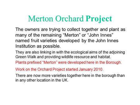 "Merton Orchard Merton Orchard Project The owners are trying to collect together and plant as many of the remaining ""Merton"" or ""John Innes"" named fruit."