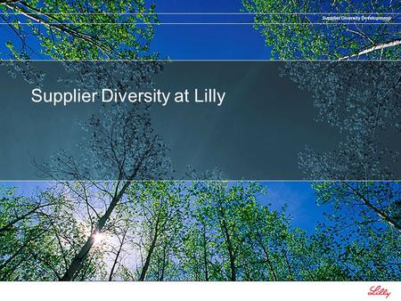 Supplier Diversity Development Supplier Diversity at Lilly.