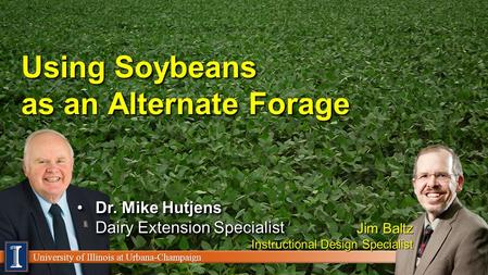 University of Illinois at Urbana-Champaign Using Soybeans as an Alternate Forage Dr. Mike Hutjens Dairy Extension SpecialistDr. Mike Hutjens Dairy Extension.