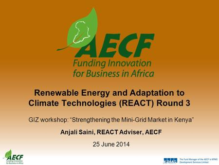 "Renewable Energy and Adaptation to Climate Technologies (REACT) Round 3 GIZ workshop: ""Strengthening the Mini-Grid Market in Kenya"" Anjali Saini, REACT."