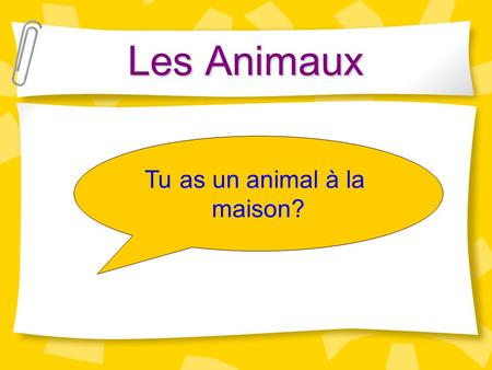 Les Animaux Tu as un animal à la maison?.