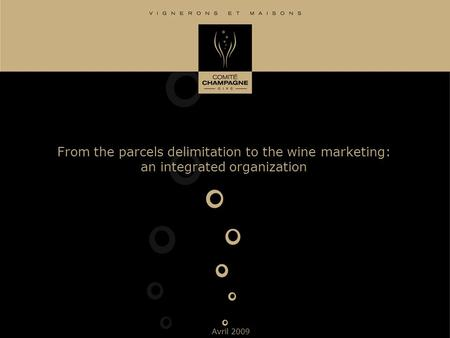 From the parcels delimitation to the wine marketing: an integrated organization Avril 2009.