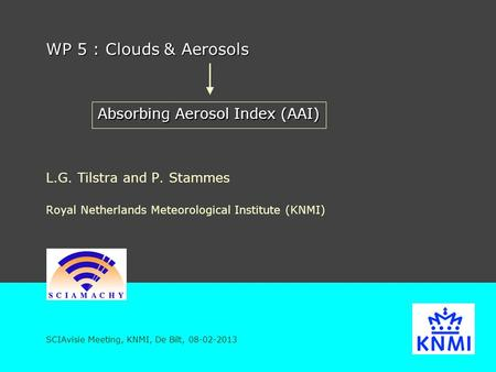 WP 5 : Clouds & Aerosols L.G. Tilstra and P. Stammes Royal Netherlands Meteorological Institute (KNMI) SCIAvisie Meeting, KNMI, De Bilt, 08-02-2013 Absorbing.