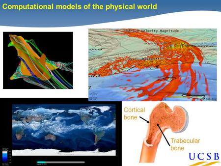 1 Computational models of the physical world Cortical bone Trabecular bone.