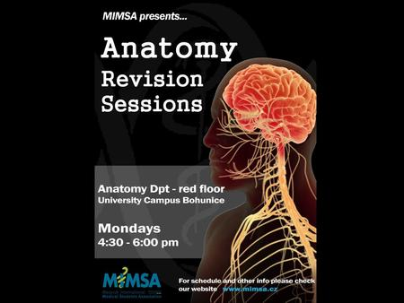 Program of sessions: 7/10 - Spinal Cord 14/10 - Brainsteam and cerebellum 21/10 - Diencephalon 28/10 - Telencephalon 4/11 - Blood Supply, Meninges and.