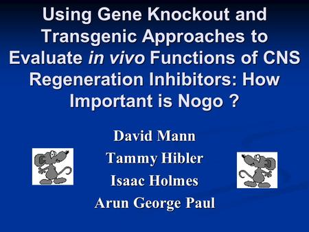 Using Gene Knockout and Transgenic Approaches to Evaluate in vivo Functions of CNS Regeneration Inhibitors: How Important is Nogo ? David Mann Tammy Hibler.