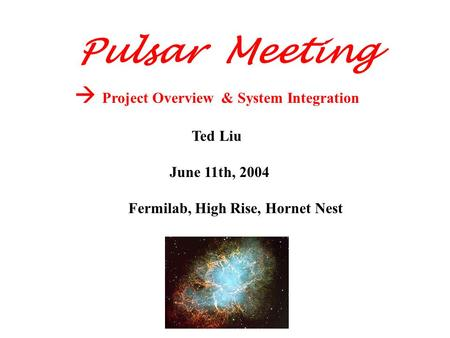  Project Overview & System Integration Ted Liu June 11th, 2004 Fermilab, High Rise, Hornet Nest Pulsar Meeting.
