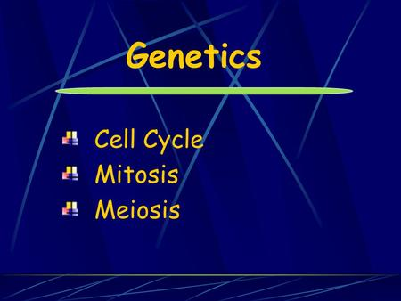 Genetics Cell Cycle Mitosis Meiosis.