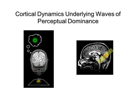 Cortical Dynamics Underlying Waves of Perceptual Dominance.
