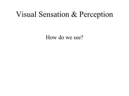Visual Sensation & Perception How do we see?. Structure of the eye.