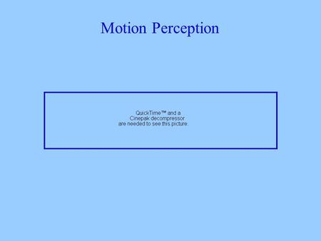 Motion Perception. Motion perception has many functions - it plays a role in segregating figure from ground in encoding depth in helping us avoid collisions.