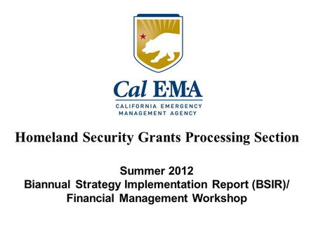 Summer 2012 Biannual Strategy Implementation Report (BSIR)/ Financial Management Workshop Homeland Security Grants Processing Section.