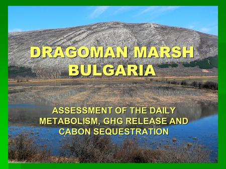 DRAGOMAN MARSH BULGARIA ASSESSMENT OF THE DAILY METABOLISM, GHG RELEASE AND CABON SEQUESTRATION.
