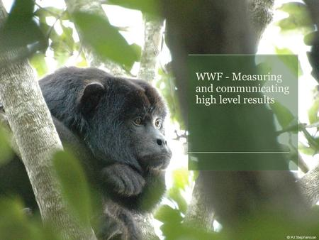 WWF - Measuring and communicating high level results © PJ Stephenson.